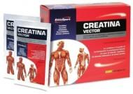 creatina vector